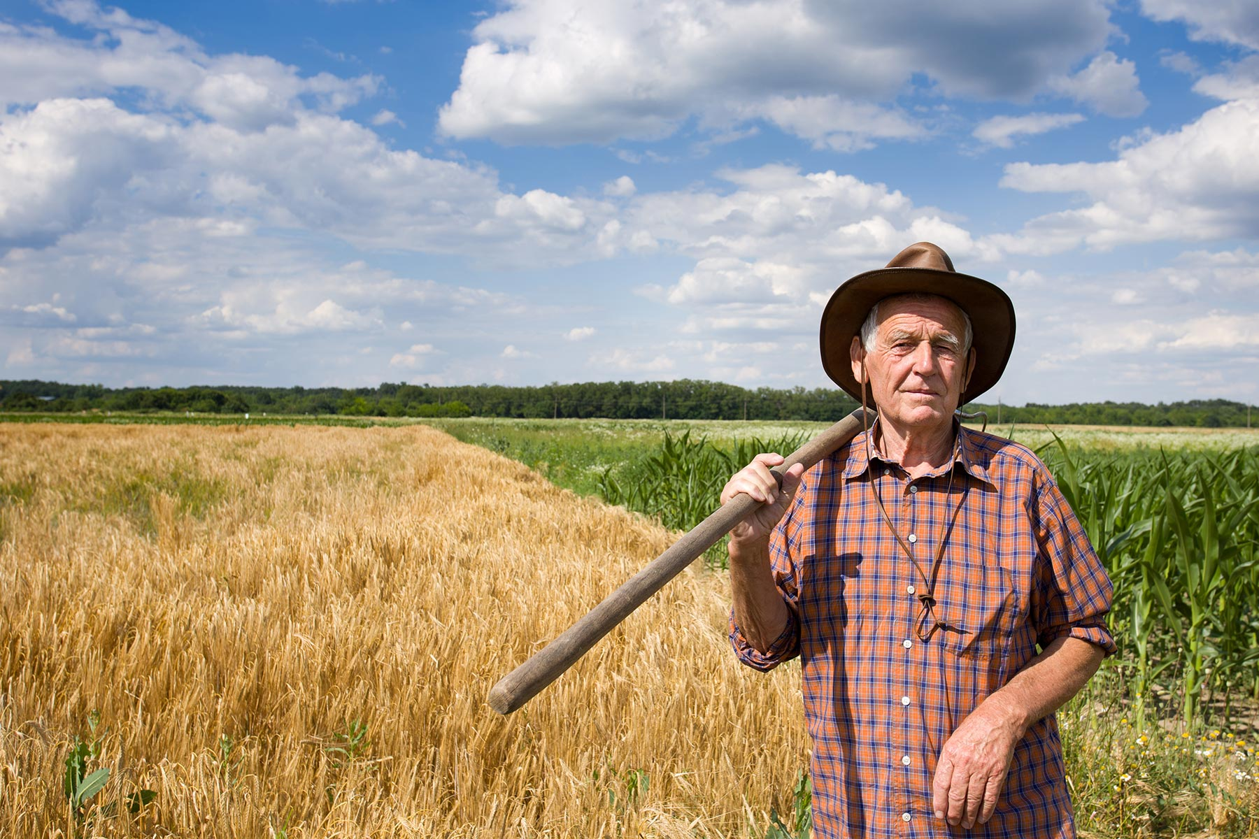 Regional and remote farmer standing in a field