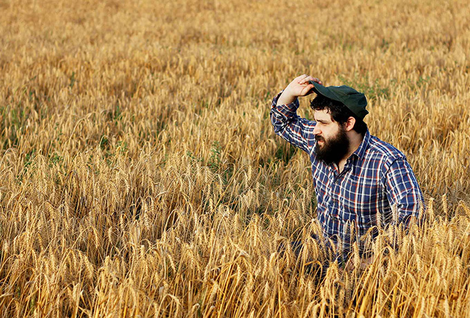 Man standing in a field in rural Australia farm