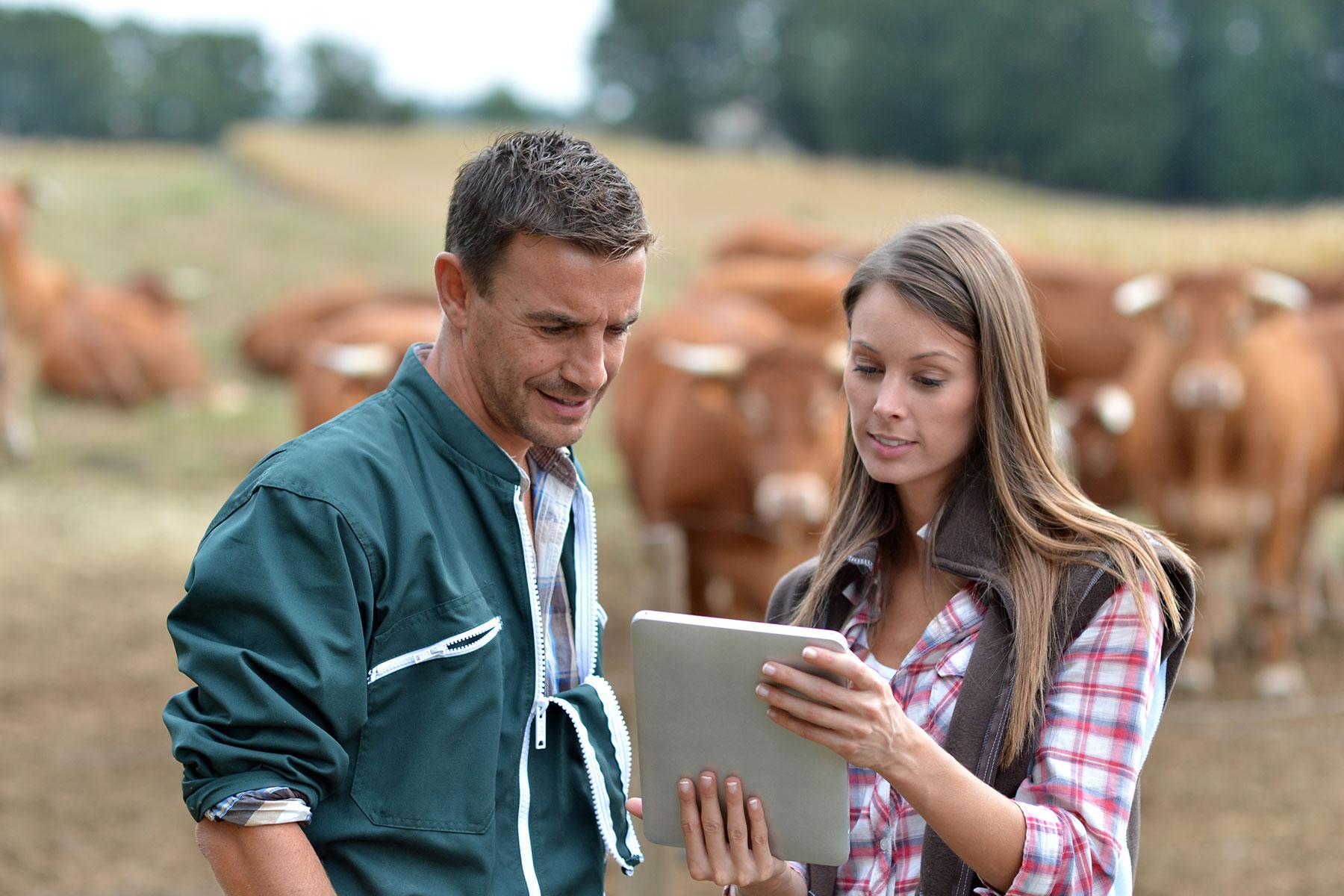 Women farmer standing in a field with a vet